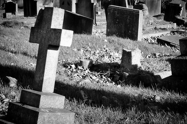 Bw_collection Monochrome Blancoynegro Black&white Photography Cemetery Graveyard Beauty Graveyard Black And Light Eye4photography  Landscape