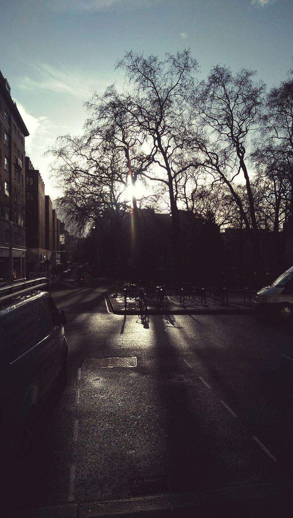 Winter sun Berkeleysquare London Sun Winter