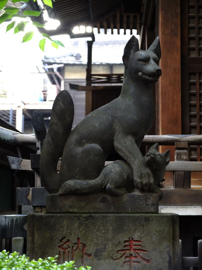 対になる左側の狛狐は親子 キツネ。 Left Side Guardian Foxes Fox🐺 Statue Stone Statue Japanese Shrine 神社 稲荷神社 Animal Statue Relaxing Hello World Enjoying Life Tokyo Walking Around 東京散策 EyeEm Best Shots