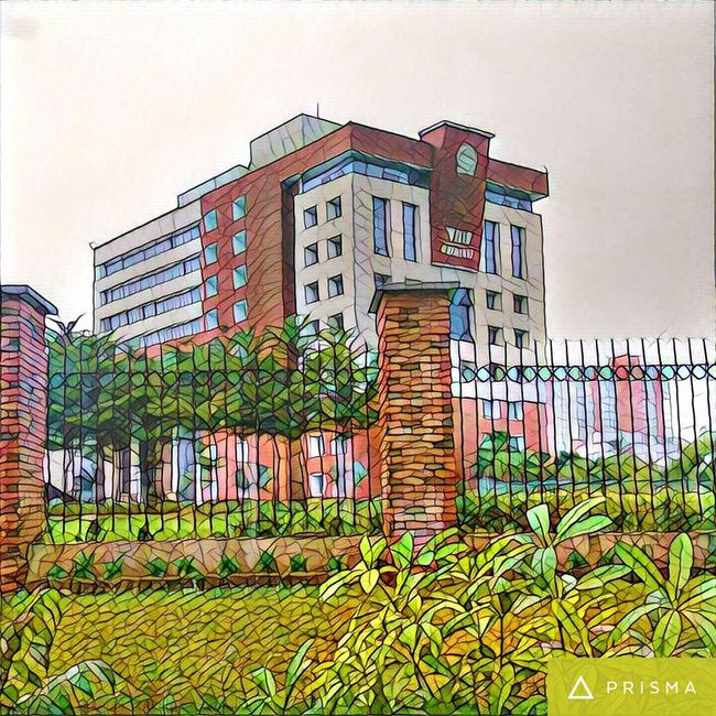 Architecture Building Exterior Built Structure Low Angle View Growth City Clear Sky Plant Flower Day Sky Outdoors Green Color Office Building No People Architectural Feature Architecture Building Exterior Built Structure Low Angle View City Growth Residential Building Clear Sky Plant First Eyeem Photo
