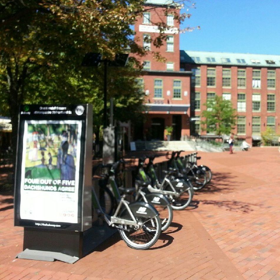 We now have our own hubway station!