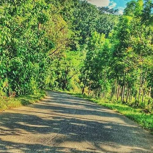 A picture of some place I visited when i was biking in Doña Remedios Trinidad Relaxing Enjoying Life Hanging Out First Eyeem Photo