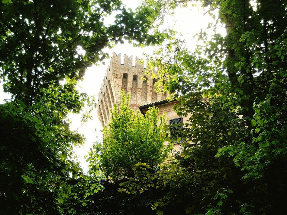 Cigognola Castle 25 Aprile Tree Nature