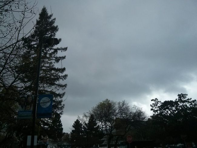 working in the rain. Myview Sky And Clouds Driverslife Trees