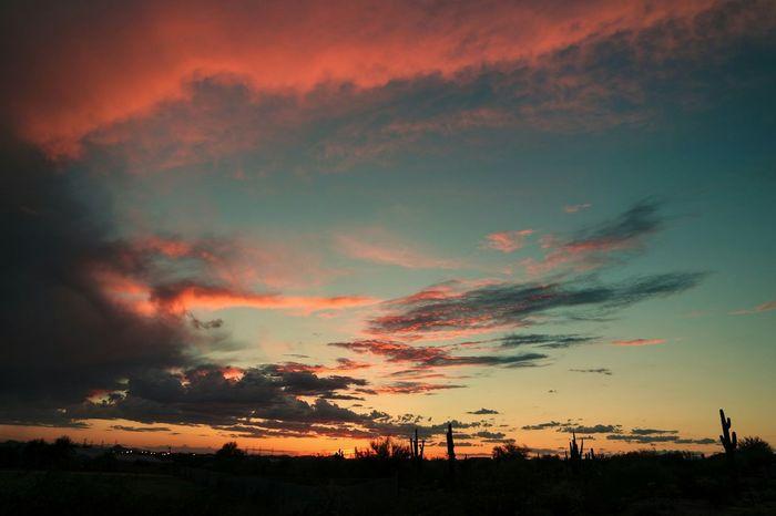 Majestic Casual Majesticcasual Sunset #sun #clouds #skylovers #sky #nature #beautifulinnature #naturalbeauty #photography #landscape Cloudporn OpenEdit