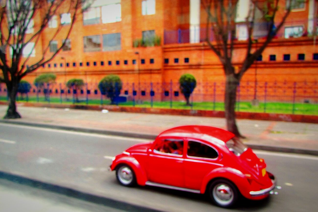 Car Rojo Automobile Escarabajo Pichirilo Check This Out Check This Out Eyemphotography Eye4photography  The Week On Eyem Relaxing Bogotá Moments Colombia Taking Photos Hello World Cheese! Cheese! Cundinamarca Photography DayPhotography Hi! That's Me Enjoying Life Hanging Out