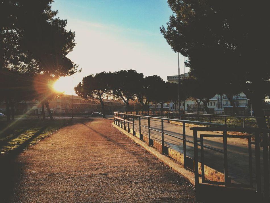 Beautiful stock photos of path, Day, Empty, Foggia, Italy