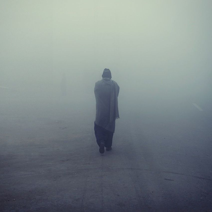Lone survivor enjoying Fog Fog Lahore Winter Pakistan