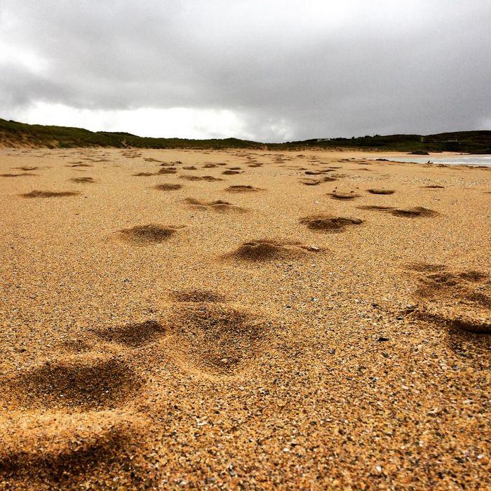 Donegal Beach Donegal Ireland Beach