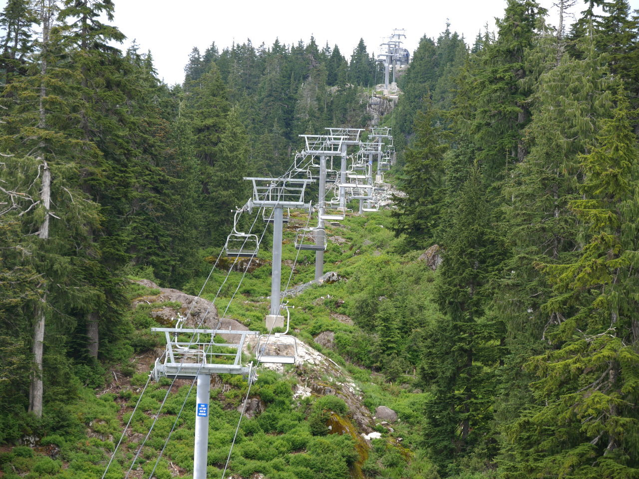 Day Green Green Color Mountain Nature No People Off Season Outdoors Ski Lift Skiing Tourism Tranquil Scene Travel Destinations Tree