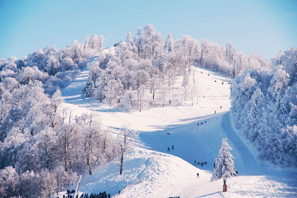 Snow Sports Outdoors Life Travel Destinations People Watching Snow Winter Cold Temperature Landscape Outdoors Mountain Adventure Club Peopleandplaces Check This Out Winter Wanderlust Its Cold Outside Weather Sky Snowing Nature Finding New Frontiers Tree Frozen Day People