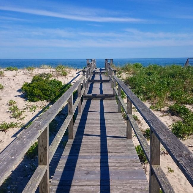 Horizon Over Water Sea Water Beach Sky Blue Scenics Tranquil Scene Tranquility The Way Forward Railing Vacations Summer Tourism Beauty In Nature Nature Boardwalk Sunny Hamptons Beach House No People Outdoors Tranquility Scenics Shore Tranquil Scene Travel Destinations