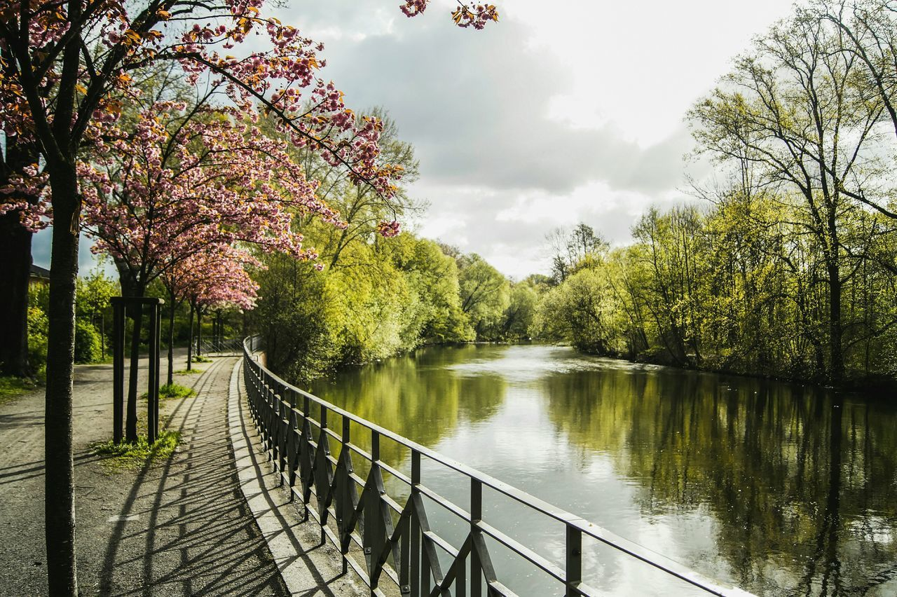 Outdoors Beauty In Nature Scenics Water Tree Nature Day Sky The Secret Spaces Glitch AdobeLightroom VSCO Wanderlust City Urban Riverside Landscape Spring The Secret Spaces