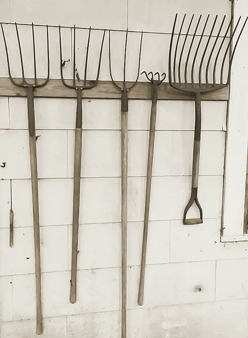 Hanging No People Architecture Day Outdoors Pitch Fork Farm Rakes Old Farm Equipment Antique Vintage Sharp Sharp Objects Lawn Care Farm Tools Tools Group Of Objects Big To Small Sizes Dangerous Things Behind You Antique Farm Equipment Vintage Tools Sharp Things White Background