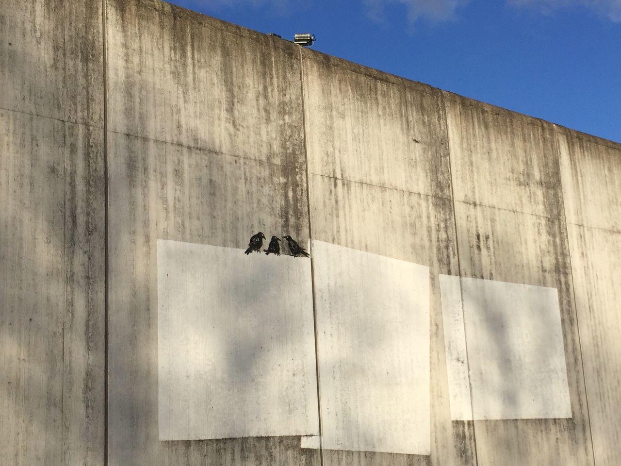 Gefängnis Mit Kunst Von Außen Eye4photography  Kunst @ Jail In Geldern Schwere Jungs Knast Jailhouses Geldern Gefängnis Kunst IPhoneography Taking Photos Hello World Jail Geldern Jail Check This Out
