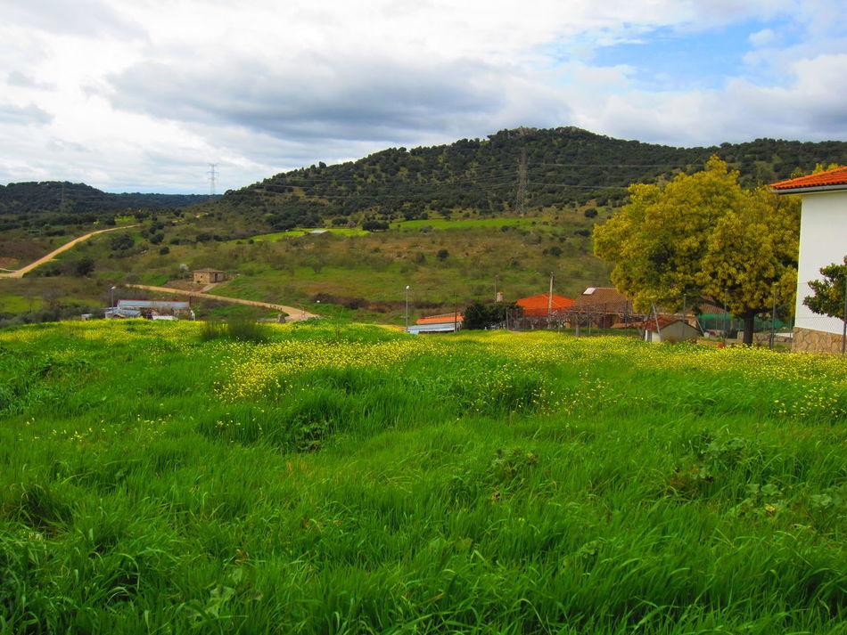 San Roman De Los Montes Landscape Nature_collection Amazing View