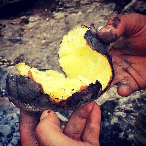 Kamping Kampateşi Ateşbaşıkeyfi Doğakampı Patates Kozdepatates Lezzeti ayrıdır gostilin... Yani közde paddisin... Tamam, tamam 😊 közde patatesin. Yanaşırsın alevin başına atarsın kozlerin içine patatesi... Canım istedi bee 😊