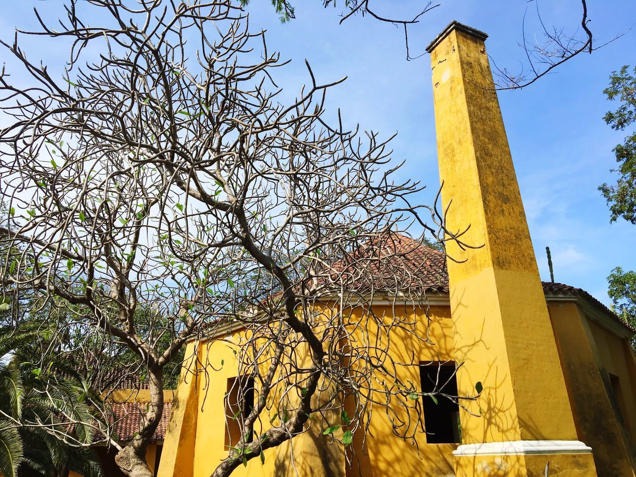Love my country Low Angle View Building Exterior Built Structure Yellow Clear Sky EyeEmNewHere
