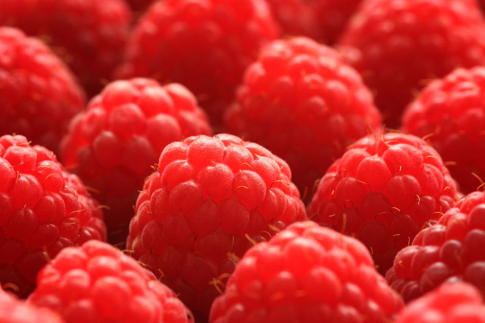 Close-up Day Food Food And Drink Freshness Fruit Healthy Eating No People Raspberries Red