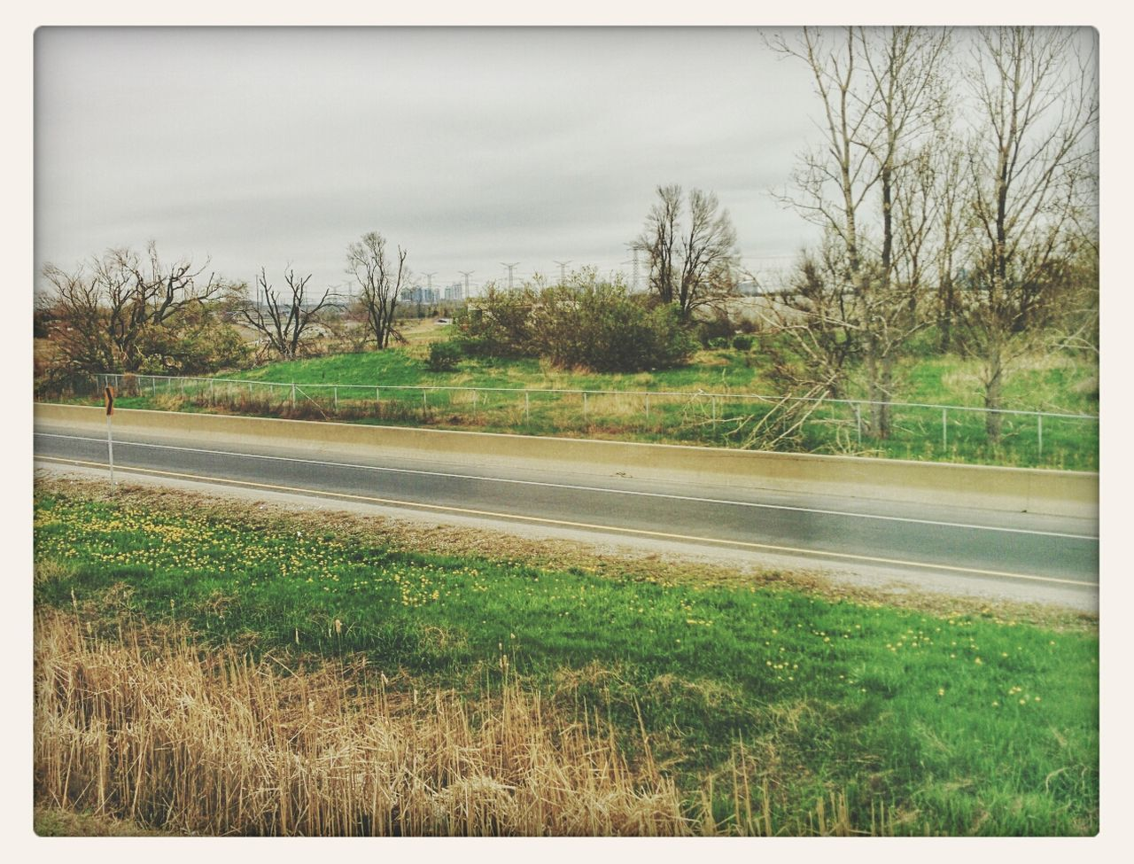 tree, grass, road, no people, field, nature, day, landscape, outdoors, tranquil scene, scenics, sky, transportation, tranquility, beauty in nature, bare tree
