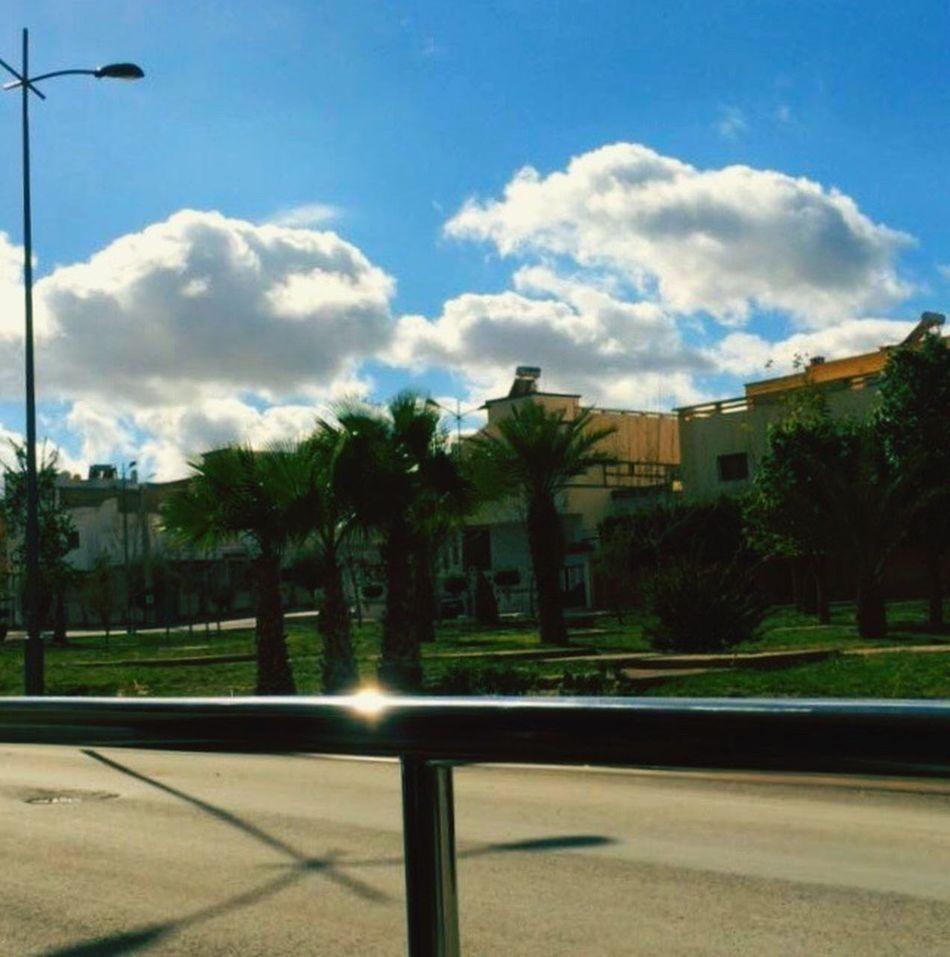 Jardin Oujda City, Morocco