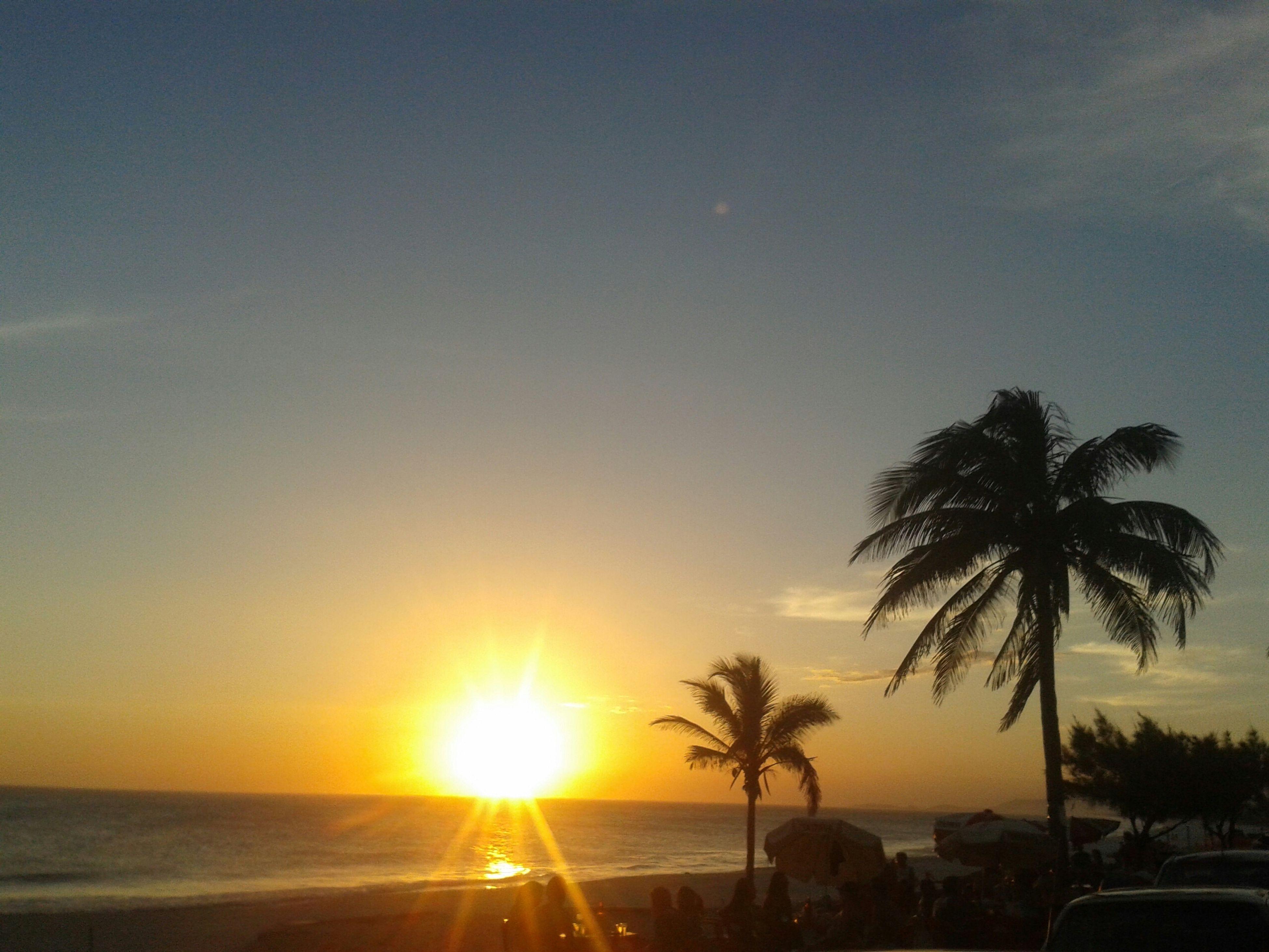 sunset, sun, sea, palm tree, scenics, tranquil scene, horizon over water, silhouette, water, beauty in nature, tranquility, tree, beach, nature, sunlight, orange color, clear sky, sky, idyllic, sunbeam