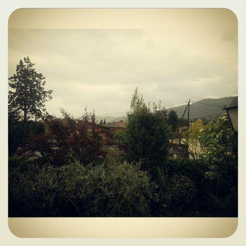 Diumenge Weekend Sofaymanta Lazy downtonabbey missing cloudy rain