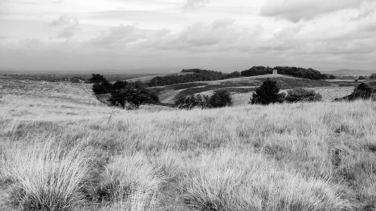 Fields and Trees Enjoying The View at Lyme Park Cheshire