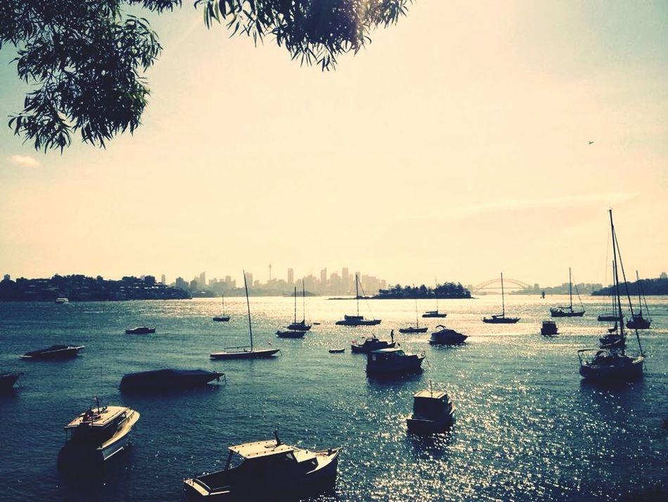 Gopro Sydney Traveling