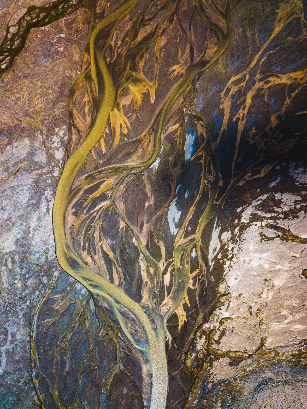 The strangled Muskol River sits along the border of Tajikistan and China. As we came over the crest I could see the arteries of the river branching out and knew this would look good from the air. Little did I know the colours that were running throughout the silt and salt. One of my favourite images to date. Abstract Photography EyeEm Best Shots EyeEm Nature Lover River view Tajikistan abstract beauty in Nature day geology high angle view landscape Nature no people outdoors pattern physical geography river scenics Textured Tree water week on eyeem winding road Perspectives on Nature