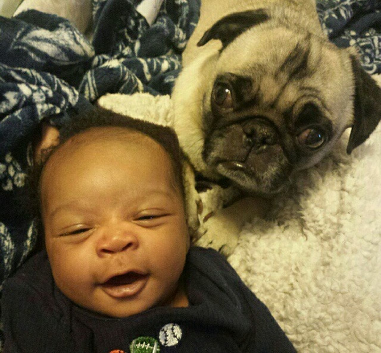 Puggies&babies