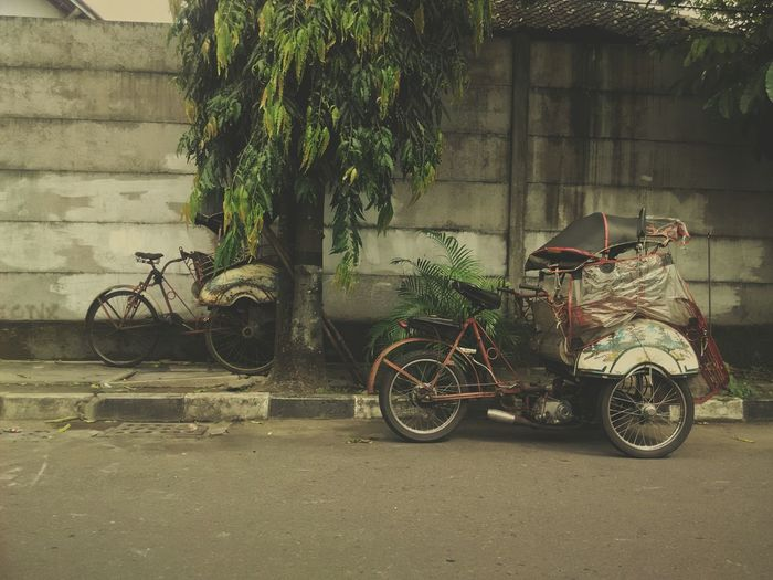 Transportation Adapted To The City Tree Mode Of Transport Bicycle Becak Bentor Becak Motor