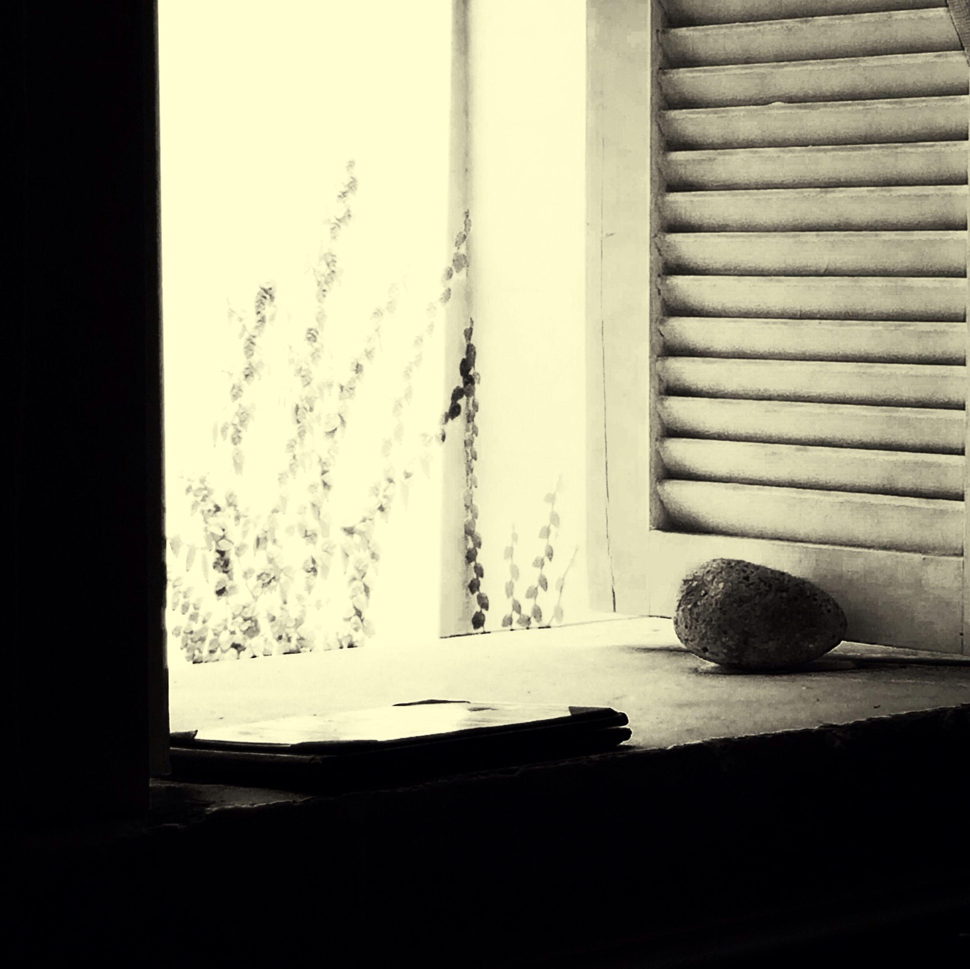 Solo una ventana