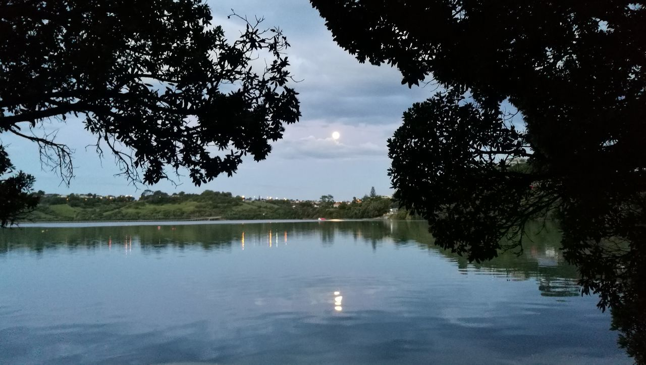 Reflection Tree Water Lake Nature Tranquility Outdoors No People Tranquil Scene Sky Day Beauty In Nature Scenics Reflection Summer Auckland Moon Moon On Water
