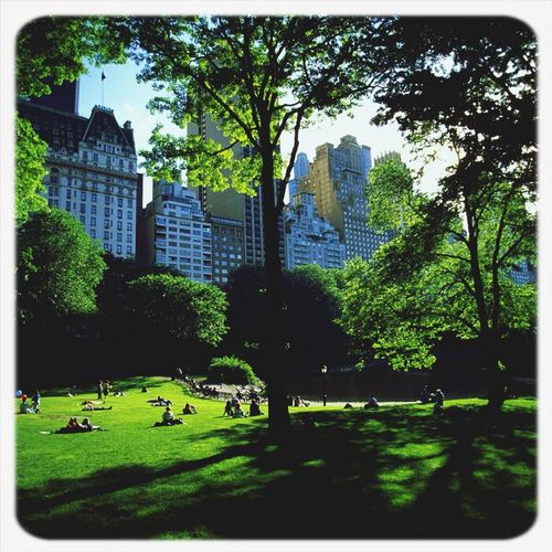 Central park,relax day!! :)