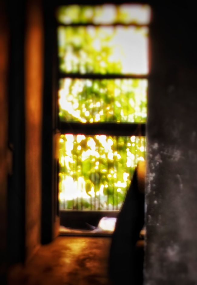 Window Indoors  Curtain Day Window Frame No People Close-up Architecture Arts Culture And Entertainment Steps And Staircases Tranquility Architecture Sunlight Nature Person Architecture And Art Traditional Clothing Adult Real People Built Structure Atmospheric Mood Travel Destinations House Door Transportation