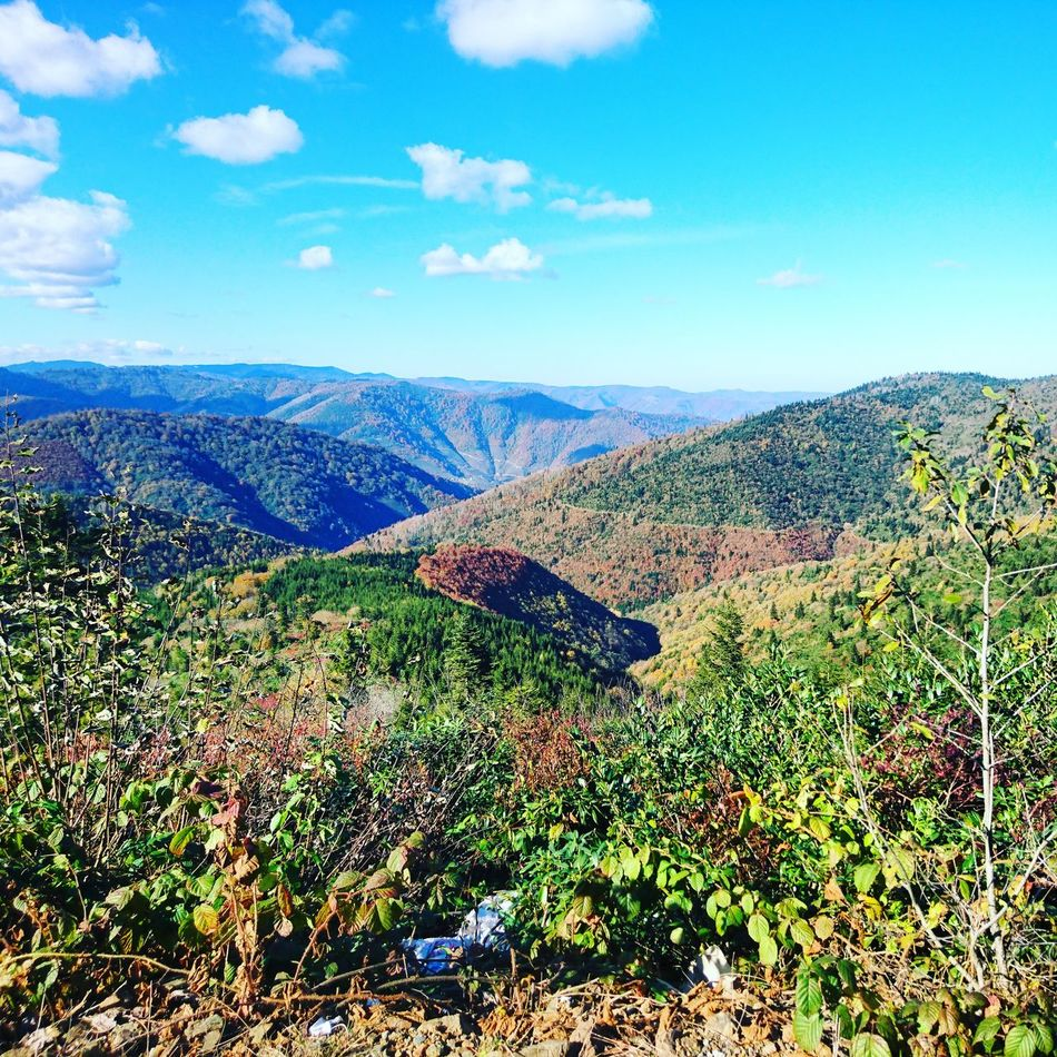 Bektaşyaylası Nature Mountain Beauty In Nature Plateau Colourful Yayla
