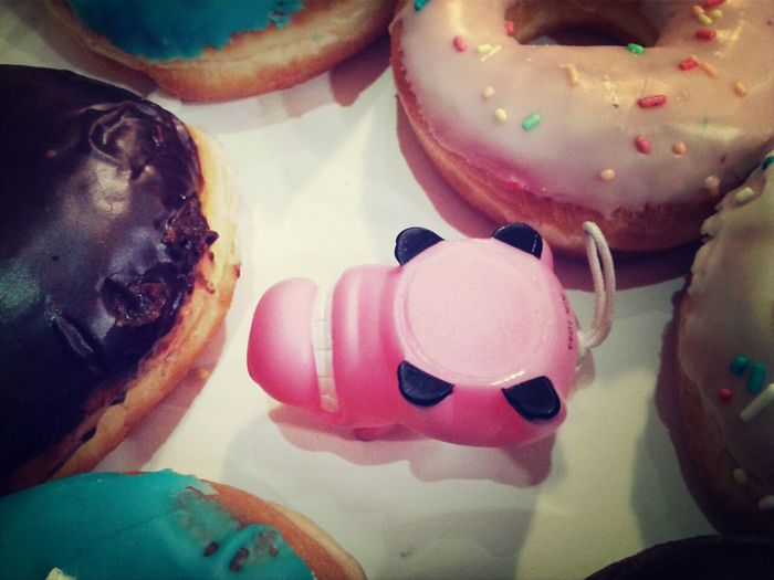 herbert vs donuts Donuts Eating Check This Out