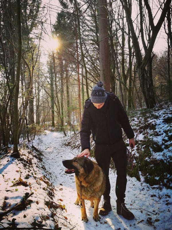 First Eyeem Photo EyeEmNewHere EyeEmNewHere Happydog Woods Winter Cold Winter ❄⛄ Wintersun Beautifulday ☀️ Pet Happypets Pets Petting Petlove🐶 Walk Walkinwoods Forrestwalk