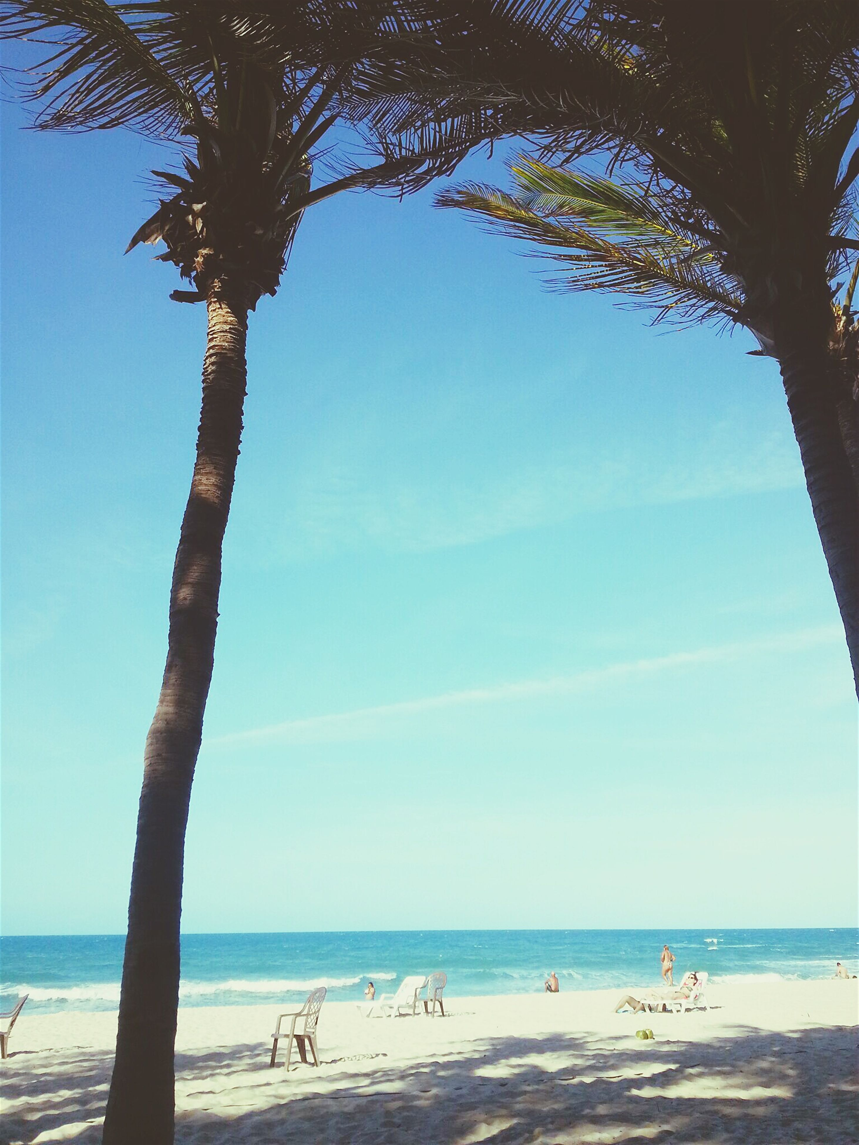 sea, beach, horizon over water, water, shore, tree, scenics, tranquility, sand, sky, tranquil scene, vacations, beauty in nature, palm tree, nature, incidental people, blue, leisure activity, idyllic