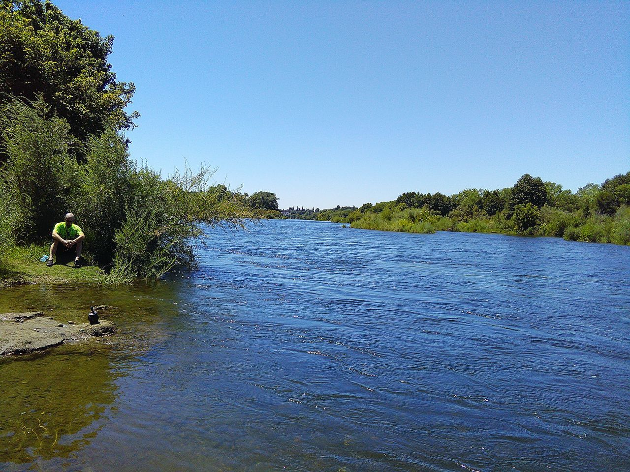 American River Trees My Photography Trees And Nature Taking Photos ❤ Sacramento, California Nature Trees And Sky Eye4photography  Walking Around Trees And Bushes Golden Grass People Watching Showcase July