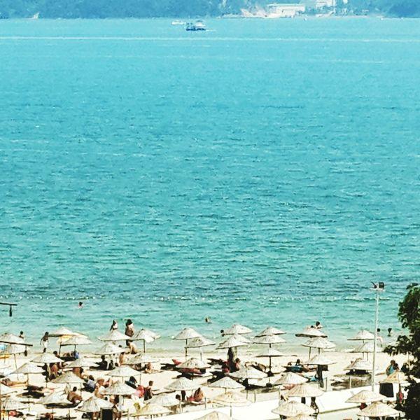 Bosphorus Bosphorus Bosphorus, Istanbul Beach Seaside Seascape Istanbul Turkey Istanbul Sun Sunny Day
