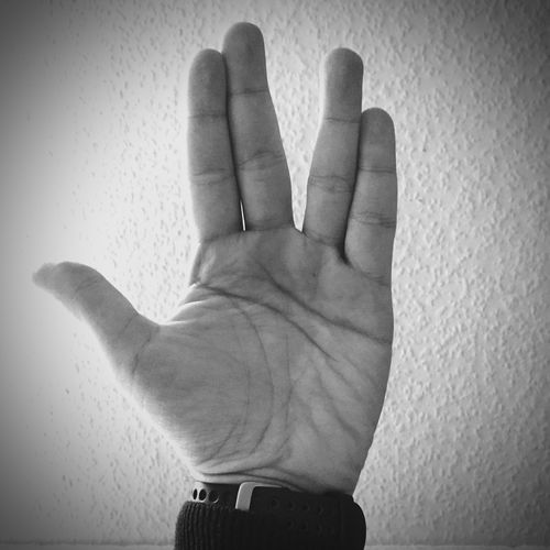Ad Astra Mr. Spock LLAP R.I.P Live Long And Prosper Star Trek Childhood Memories Childhood Heroes