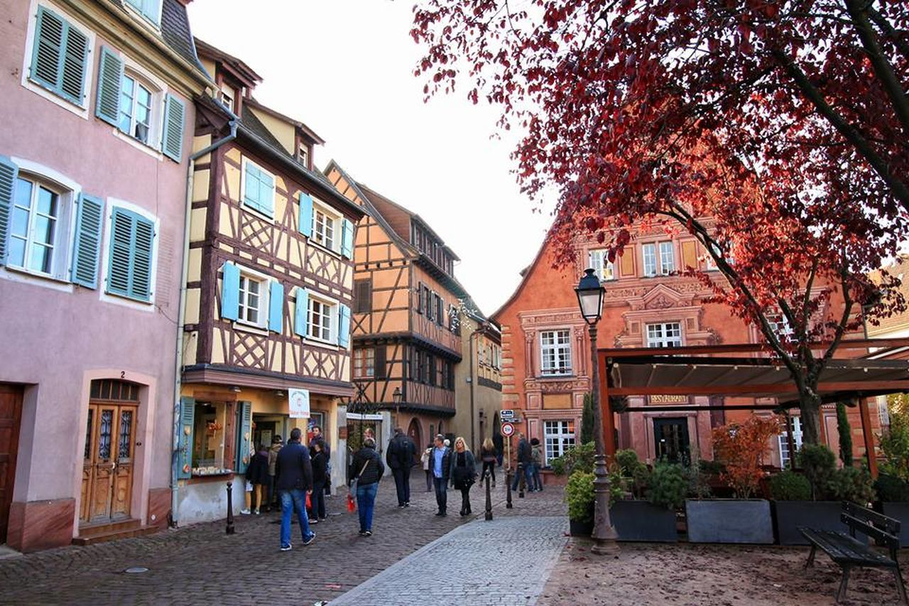 Autumn Colmar Colmar, Alsace, France Colourful Europe France French Landscape Nature Outdoors Streetphotography Village First Eyeem Photo