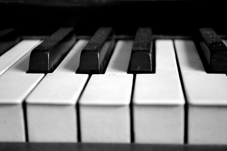 Beautiful stock photos of piano, Close-Up, Front View, Full Frame, Horizontal