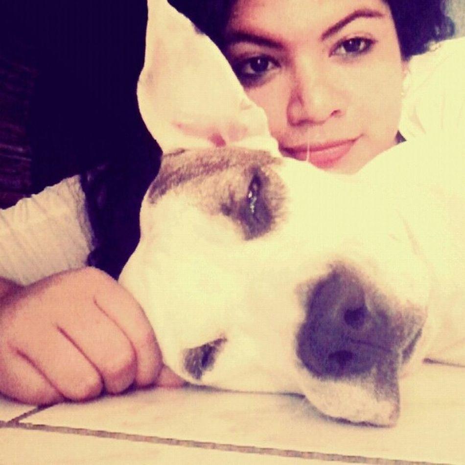 despierta.. amor de mi vida. Dog Love My Life ❤ Shh!!