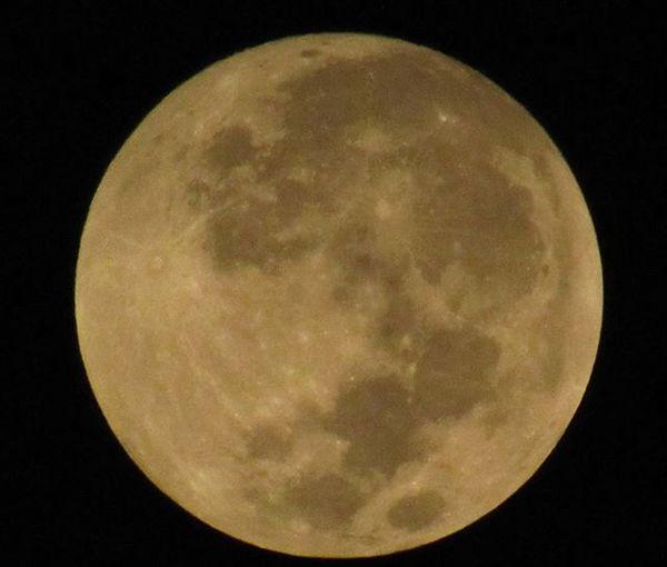 Super Moon !! Lunareclipse Supermoon Bloodmoon Redmoon Lunar Moon 3amPost LATEnightPost NatGeoChannel NationalGeographicCreative Canon Powershot Fullmoon Harvestmoon Spacesunday Indiapictures ShotfromIndia KolkataShot NightDiaries Wanderlust