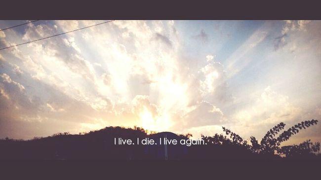 I live. I die.i live again. Sunset Nothingelsematters