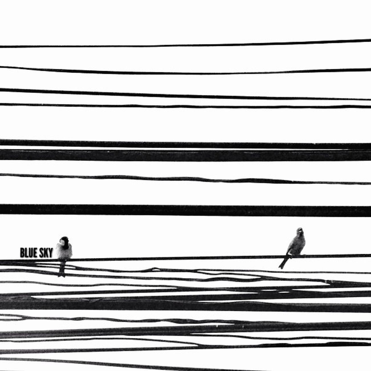 Power Lines The Minimals (less Edit Juxt Photography) Bw_collection EyeEm Best Shots