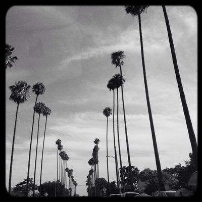 Going home in Los Angeles by Jaxxierb